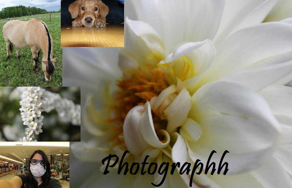 photographh